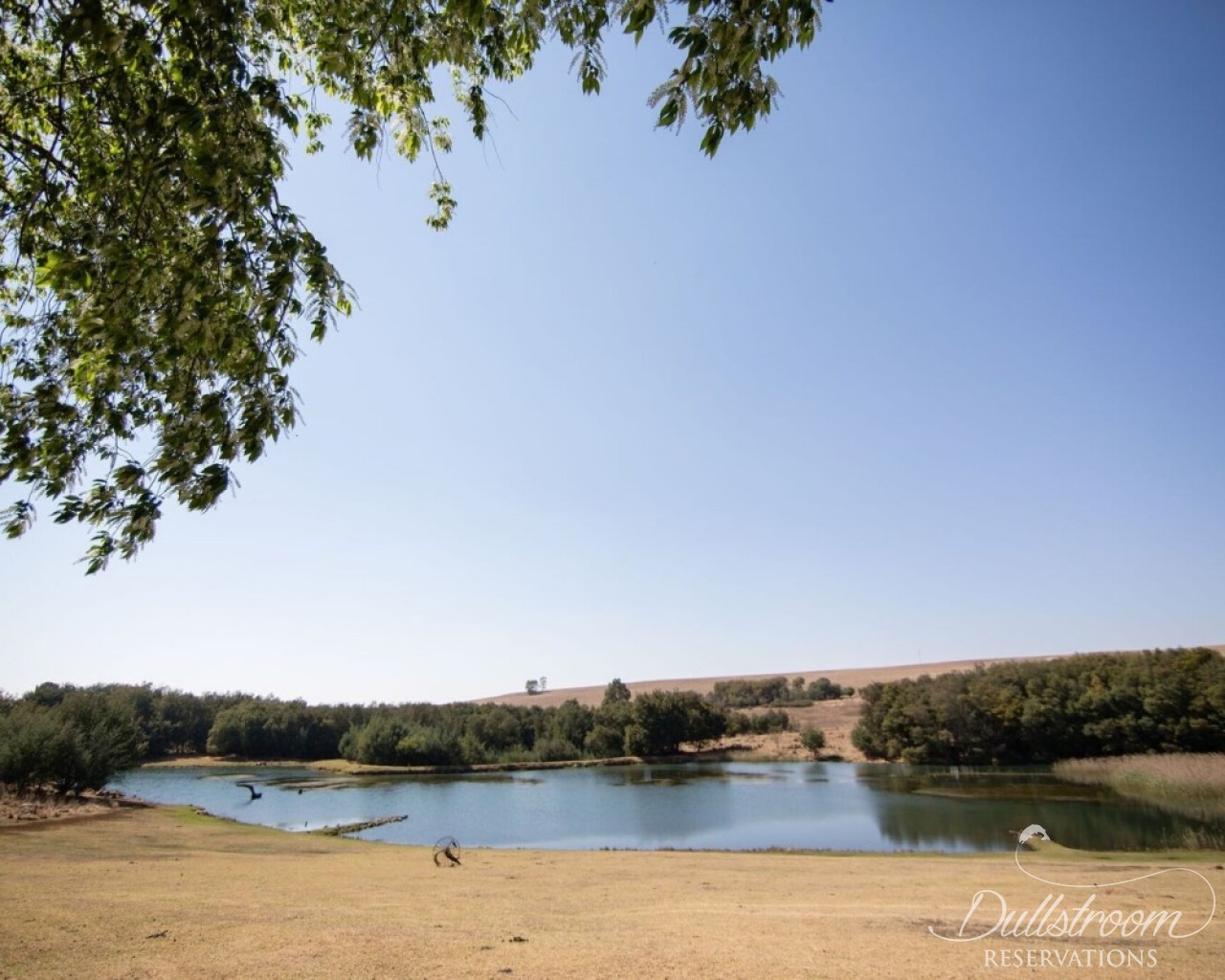 Lake Heron Maly Fisher Accommodation In Dullstroom
